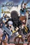 Kingdom Hearts III: The Novel Volume 3